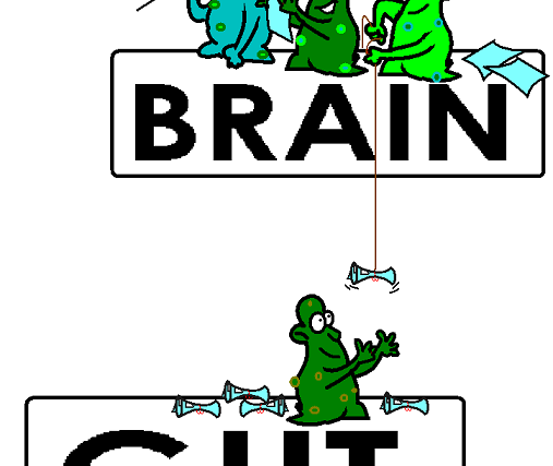 AUTISM, THE BRAIN GUT CONNECTION AND THE LEAKY GUT SYNDROME