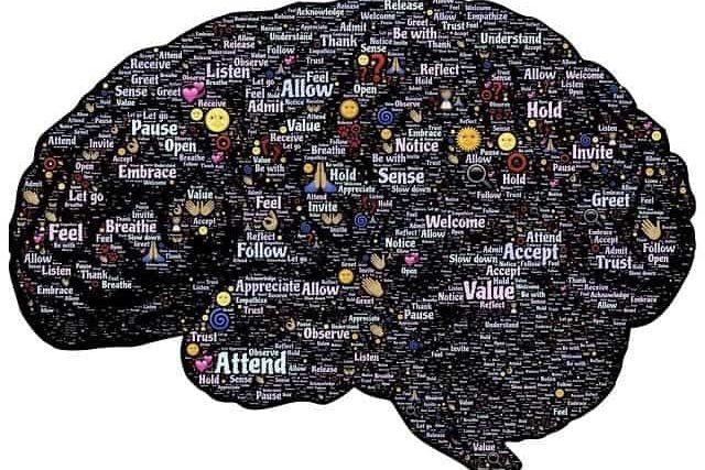 Autismo, Hiperfuncionalidade e a Síndrome do Mundo Intenso